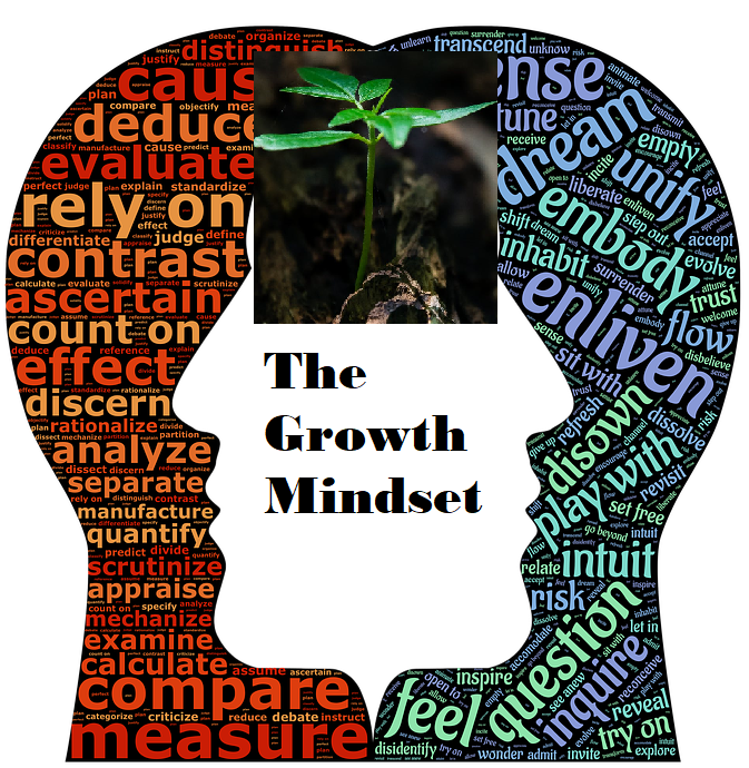 THE GROWTH MINDSET- INTRODUCTION.